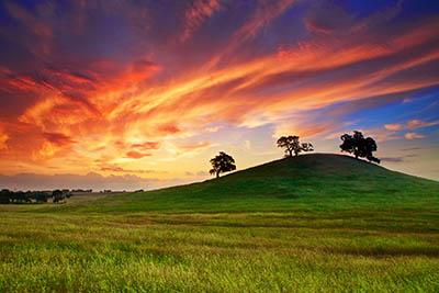 שקיעה  שקיעה  sunset_spring_May_sky_clouds_field_grass_trees