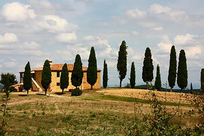 נוף כפריתמונות של שדות צילומים  נוף כפרי  איטליה   toscana  טוסקנה