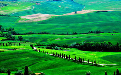 נוף כפריטוסקנה איטליה fields trees italy road Tuscany