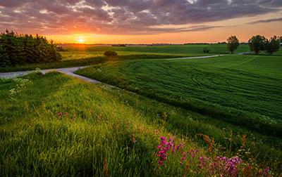 שקיעה   SunsetGP-VIEW-3516