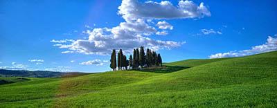 נוףנוף  טוסקנה   איטליה  עצים