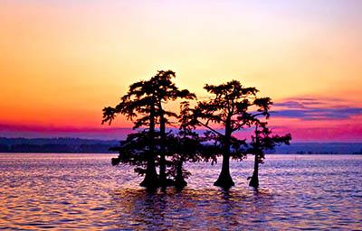 Reelfoot Lake Reelfoot Lake