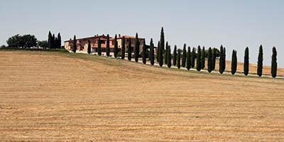 נוף כפריתמונות של שדות צילומים איטליה טוסקנה