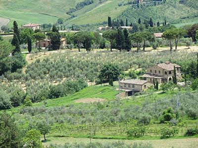 נוף כפריעתמונות של שדות צילומים   כרמים  נוף כפרי  איטליה טוסקנה