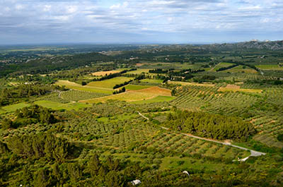 Les Baux de Provence near Aixכרמיםתמונות של שדות צילומים  Les Baux de Provence near Aix