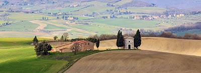 נוף כפרינוף כפרי   איטליה טוסקנה  עצים