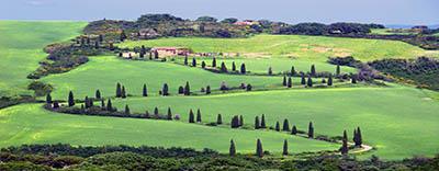 Toscana Italia dorcia Toscana Italia dorcia     עצים  איטליה טוסקנה