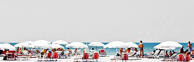 חוף היםשמשיות
