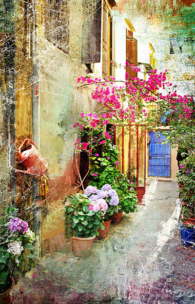 חצר עם פרחיםחצר עם פרחים
