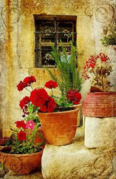 חלון ומדרגות עם פרחיםחלון ומדרגות עם פרחים
