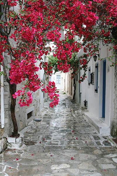 יוון  - greeceיוון  - greece