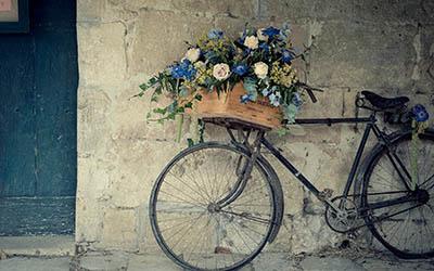 אופניים עם פרחיםאופניים עם פרחים  _Vintage Bicycle with Flowers