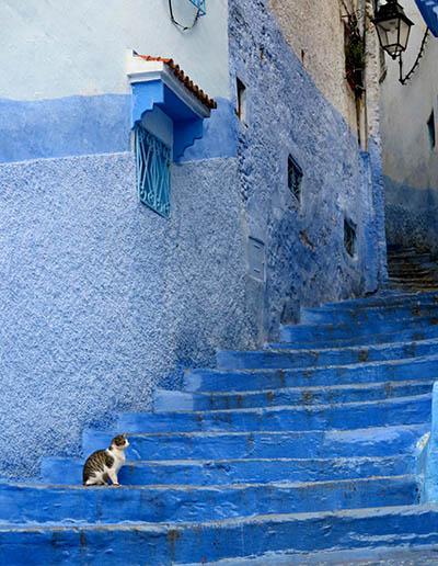 מרוקו  -  maroco