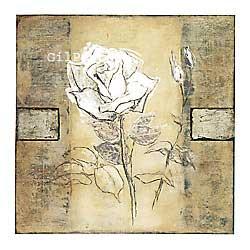 שושן לבןרומנטי עיצוב מודרני מינמליסטי  ורד שושנה