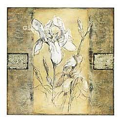 שושן לבן 2רומנטי עיצוב מודרני מינמליסטי ורד שושנה
