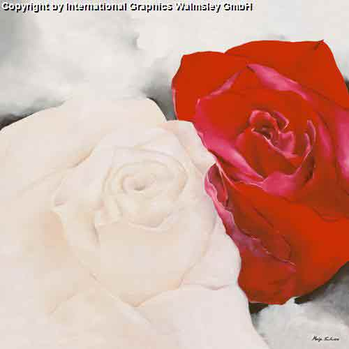 שושן אדום שושן לבןעיצוב דקורטיבי פינת אוכל סלון פרח צילום