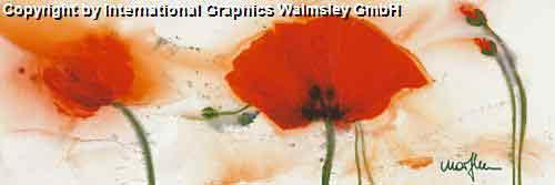 כלניות בגדול 1עיצוב צבעי מים אדום פרג דקורציה