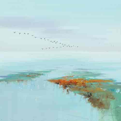 מעוף ציפורים אבסטרקט שמים  שדה כתום תכלת כחול נחל נהר ים ציפור רגוע