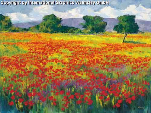 אדום בשדהאימפרסיוניסטים כלניות צבעוני צילומי נוף חי צבעים