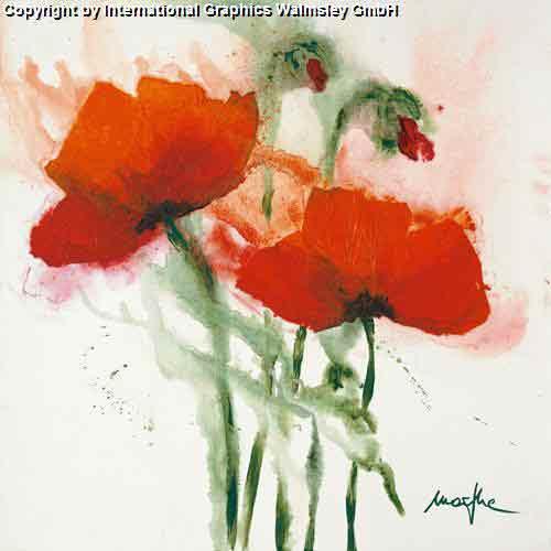 פריחה אדומה ברוח 2עיצוב דקורציה פרחים גדולים אדומים אש קישוט