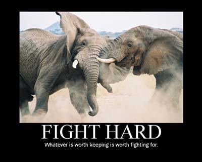 Motivation - Fight Hard
