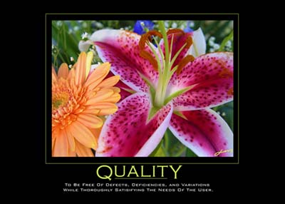 Motivation - quality
