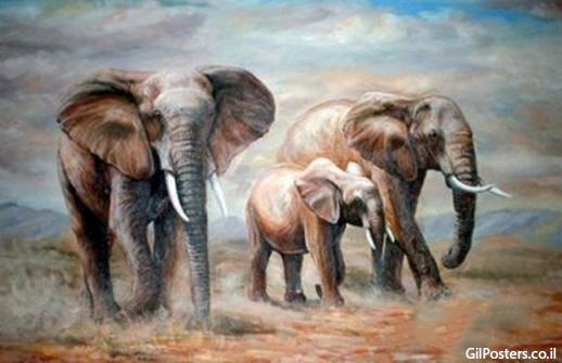 פילים 2  - תמונת שמן על בד