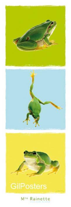 צפרדע כפול 3צפרדעים ביצה טבע ירוק קפיצה