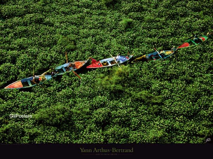 נוף נילוס מלמעלה גונגל סירות ירוק