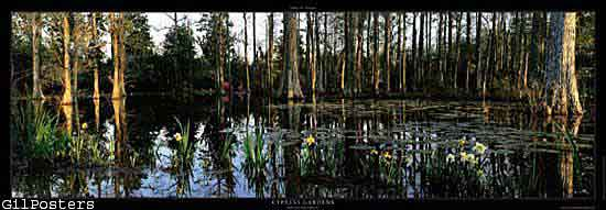 Cypress gardens Monks Corner, South Carolina USA