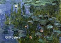 מונה - פרחי מיםפרחים,נוף, מים