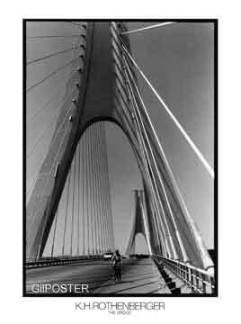 ענקגשר שחור לבן עיר ענק נוף