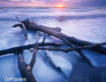 גזעים במיםטבע אבנים חוף פסטורלי כתום שקיעה נוף זריחה כחול
