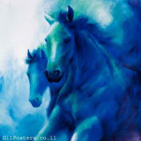 זוג סוסיםמהירות יופי חיות בעלי חיים סוסים כחולים