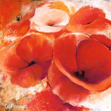 פרחים באדום 2כתום דקורציה יופי צילום טבע כלניות