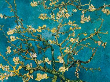 שקדיה - ואן גוךעץ , ואן גוך, שקדיה, כחול, אמנים מפורסמים, וינסנט ון גוך, ון גוך