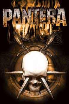 Pantera מוסיקה רוק פופ להקה הופעה חיה גיטרה פנטרה Stabbed Skull