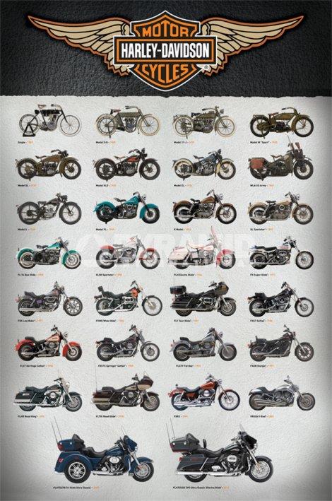 אופנועיםסוגי אופנועים, אופנוע, אופנועים, תחבורה