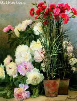 Peonies and Red Carnations