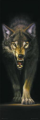 Meikelejohn Graphics Stalking WolfMeikelejohn_Graphics_Stalking Wolf