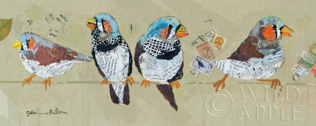 ציפורים על חבל 1 חיות ,תוכי,  ציפורים, ציפור, חבל, חוט, צפורים על חוט, כחול, בול , בולים, קולאז, נוצות,ציוץ ציפורים