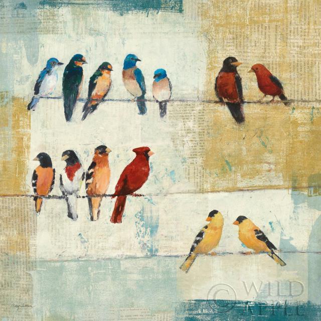 החשוד המיידיציפורים, חוט, ציור, חבל, דקורטיבי, צבעוני, תוכים, ציפור