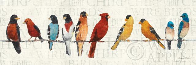 ציפורים על חבלחיות, ציפורים, מילים, ציפורים על חבל, שחור, כתום, אפור, חום, קרם, דקורטיבי, חוט, אביב, לבן