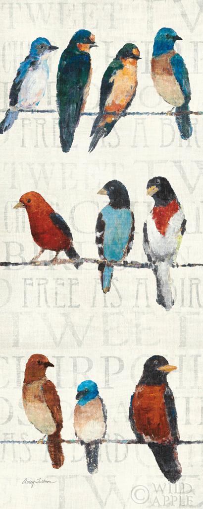 הציפורים החשודותחיות, ציפורים, מילים, ציפורים על חבל, שחור, כתום, אפור, חום, קרם, דקורטיבי, חוט, אביב, לבן