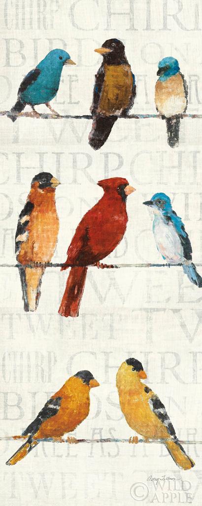 הציפורים החשודות 2חיות, ציפורים, מילים, ציפורים על חבל, שחור, כתום, אפור, חום, קרם, דקורטיבי, חוט, אביב, לבן