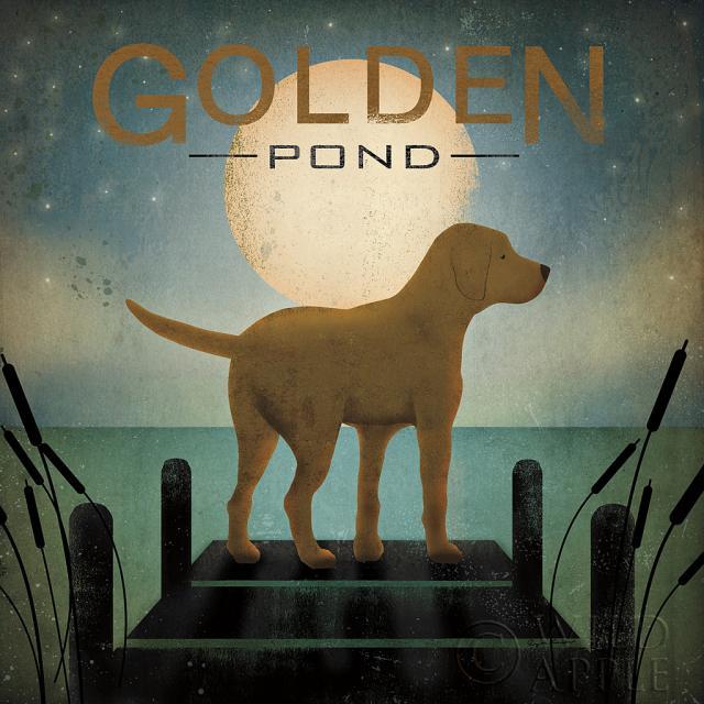 כלב בזריחת הירחחיות, שחור, כחול , חום, מזח, קרם, כלב, כלבלב, גולדן, ירוק, מים, אגם, לילה, ירח, ירח מלא, ערב, לברדור