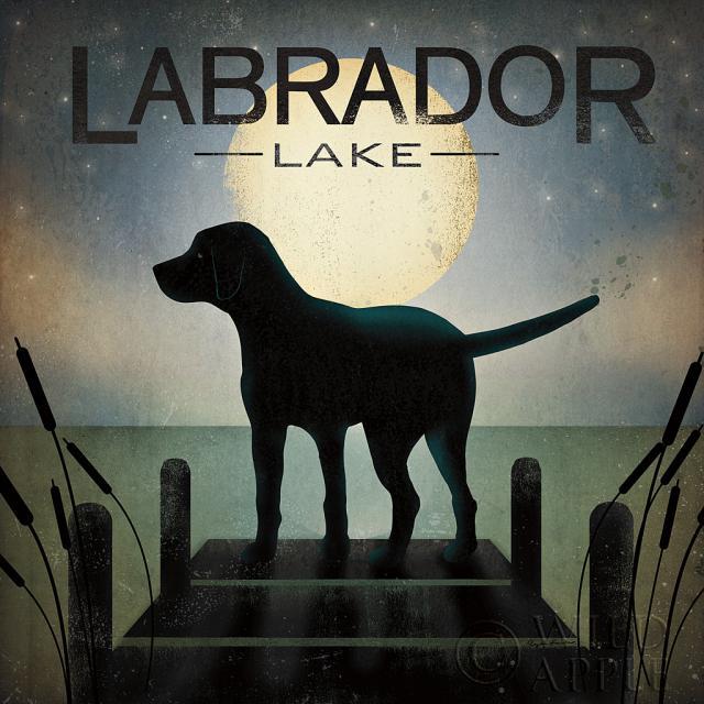 כלב שחור בזריחת הירחחיות, שחור, כחול , חום, קרם, כלב, כלבלב, גולדן, ירוק, מים, אגם, לילה, ירח, ירח מלא, ערב, לברדור