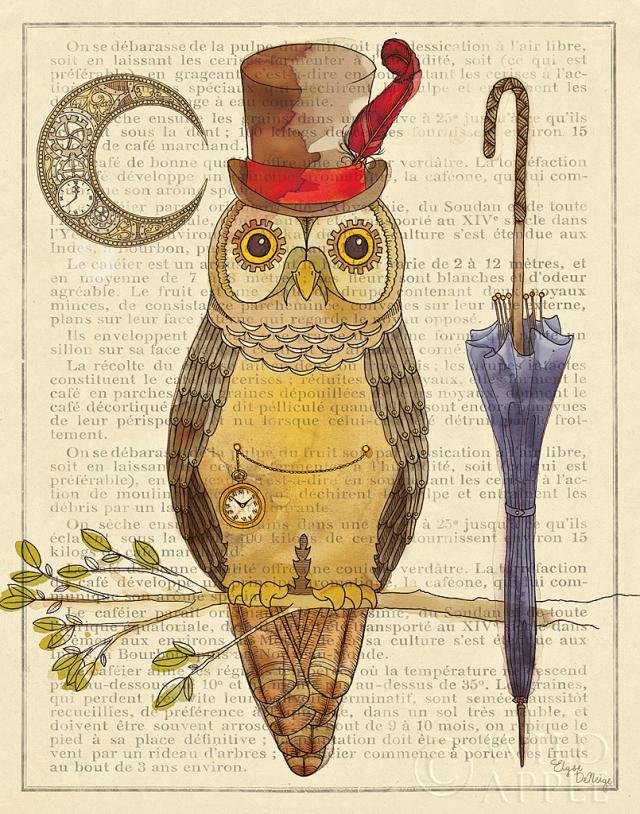 ינשוף עם סטייל 1ציפור, ינשוף, חיה, איור, כובע, מטריה, ענף,נוצה, ירח , שעון ,עיתון