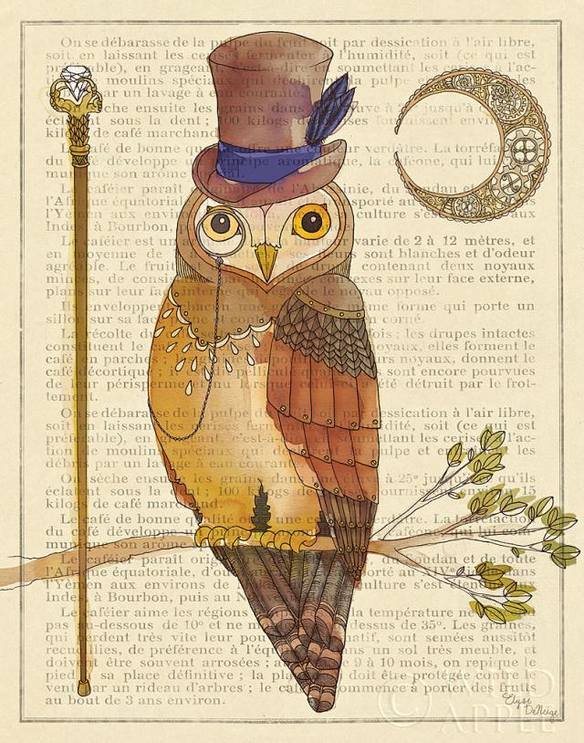 ינשוף עם סטייל 2ציפור, ינשוף, חיה, איור, כובע, מטריה, ענף,נוצה, ירח , שעון ,עיתון
