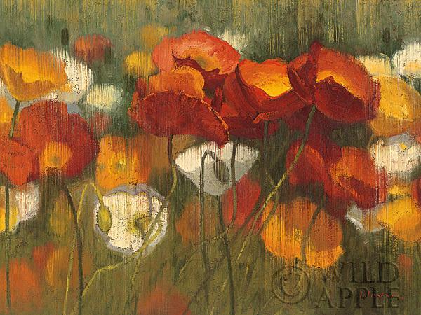 כוחו של אדום 2שדה, פרחים , אביב, פריחה, פרח, כתום, אדום, ירוק, נוף, ציור